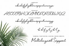Candelia Font Product Image 6