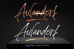 Aulendorf Product Image 3