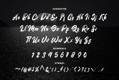 Voldory Modern Script Font Product Image 5