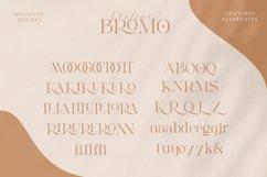 Bromo Plateau Product Image 4