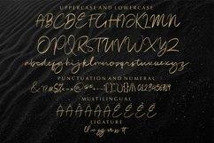 Rodetta_new brush handwritten font Product Image 5