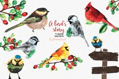 A Bird's Story - Watercolor Illustrations Product Image 1