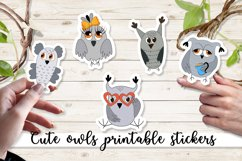 Cute owls printable cricut stickers. PNG, JPG, PDF. Product Image 1
