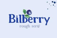 Bilberry rough serif font Product Image 1