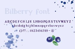 Bilberry rough serif font Product Image 6