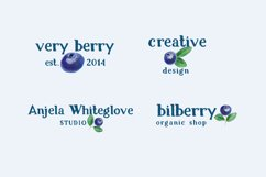Bilberry rough serif font Product Image 3