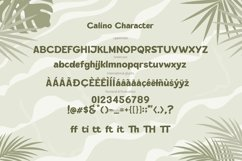 CALINO - Display Font Product Image 6