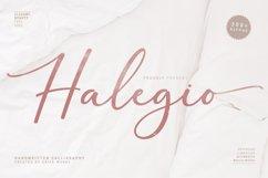 Halegio | Modern Calligraphy Product Image 1