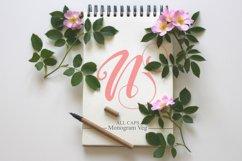 Floral Font Bundles Product Image 5