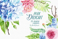 Floral Watercolor Illustrations | Flowers Digital Cliparts Product Image 1