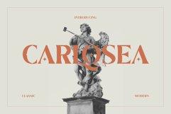 Carlosea Classic Serif Product Image 1