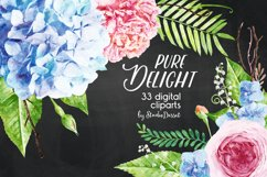 Floral Watercolor Illustrations | Flowers Digital Cliparts Product Image 2