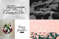 All In One Script Font Big Bundle Product Image 2