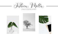 Mochalisa Product Image 4