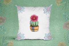Watercolor cacti and succulents Product Image 4