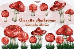 Amanita Mushrooms Watercolor Clipart Product Image 1