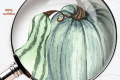Pumpkin Watercolor Clipart Product Image 3