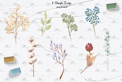 Dried Flowers Clipart Product Image 4