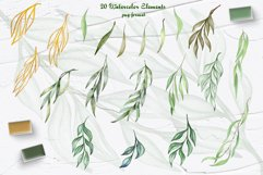 Eucalyptus Willow Watercolor Clipart Product Image 5