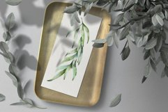 Eucalyptus Willow Watercolor Clipart Product Image 6