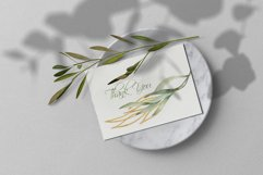 Eucalyptus Willow Watercolor Clipart Product Image 2