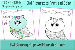 Cute Owl Coloring Pages - Printable - 8.5x11 - PNG Product Image 1