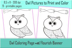 Cute Owl Coloring Pages - Printable - 8.5x11 - PNG Product Image 2