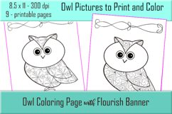 Cute Owl Coloring Pages - Printable - 8.5x11 - PNG Product Image 3