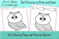 Cute Owl Coloring Pages - Printable - 8.5x11 - PNG Product Image 4