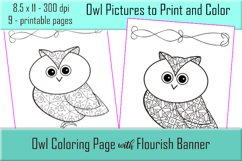 Cute Owl Coloring Pages - Printable - 8.5x11 - PNG Product Image 5