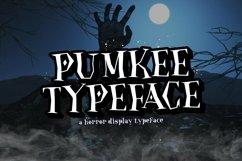 Web Font Pumkee Product Image 1