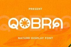 Web Font Qobra Font Product Image 1