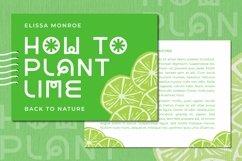 Web Font Qobra Font Product Image 2