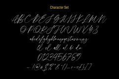 Quintys Calligraphy Script Font Product Image 4