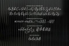 Web Font Ragha - A Beauty Script Font Product Image 6