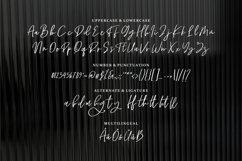 Ragha - A Beauty Script Font Product Image 6