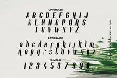 Web Font Ramelia - Logo Font Product Image 4