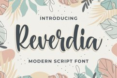 Raverdia Modern Script Font Product Image 1