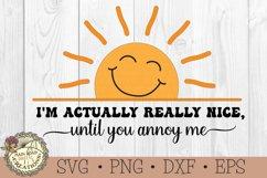 I'm Actually Really Nice-SVG-Sarcastic-Sunshine-Funny Humor Product Image 4