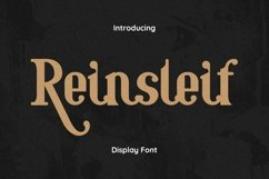 Web Font Reinsleif Product Image 1
