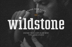 Wildstone Product Image 1