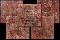 Rose Gold Grunge Backgrounds - 12 Distressed Grunge Textures Product Image 3