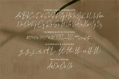 Web Font Ripley - A Signature Handwritten Font Product Image 3