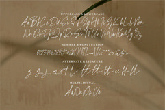 Ripley - A Signature Handwritten Font Product Image 3