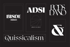 Rische - Display Serif Variable Product Image 4