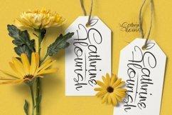 Web Font Risemay Font Product Image 4