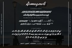 Romagnoli Product Image 4