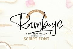 Web Font Roombays - Narutaly Flow Handwriting Script Font Product Image 1