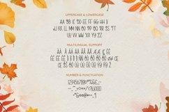 Web Font Rosella Product Image 5
