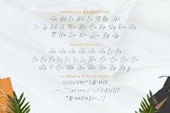 Web Font Royana Product Image 3